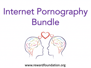 Internet Pornography Bundle