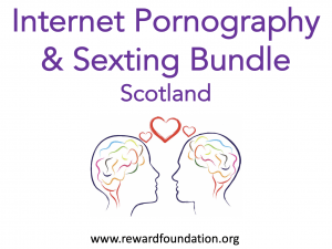 Internet Pornography Sexting Bundle Scotland