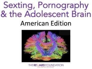 Pornography Sexting Bundle American